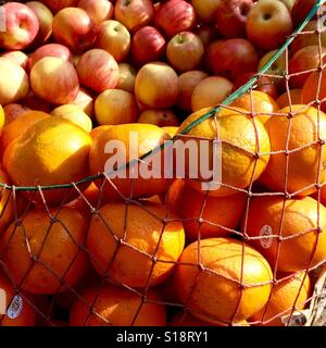 Apples and oranges in a net - Stock Image