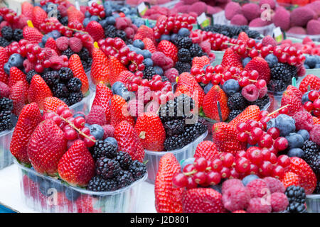 Europe, Czech Republic, Prague. Berries for sale at Havel's Market. Credit as: Wendy Kaveney / Jaynes Gallery - Stock Image