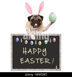 cute pug puppy dog with bunny ears diadem, holding up easter egg hanging with paws on blackboard sign with text happy easter and decoration, isolated  - Stock Image
