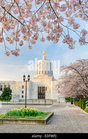 The Oregon State capitol building in spring with daffodils and cherry trees in bloom. - Stock Image