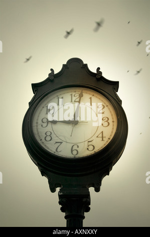 A morning view of birds flying by a clock standing in a village square. - Stock Image