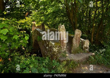 UK, Yorkshire, Wharfedale, Linton Falls, ancient stone packhorse bridge across Captain Beck - Stock Image