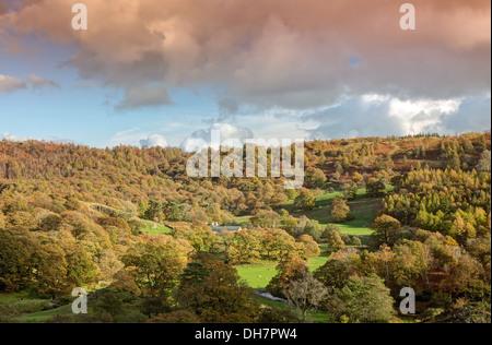 Autumn Colours towards Tarn Hows - Stock Image