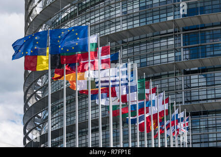 Flags of europian nations in front of EU parliament in Strasbourg, - Stock Image