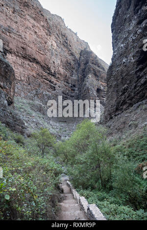 The walls of the ravine tower above the footpath along the gorge called the Barranco del Infierno, Adeje, Tenerife. - Stock Image