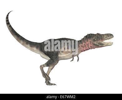 Dinosaurier Tarbosaurus bataar / dinosaur tarbosaurus bataar - Stock Image