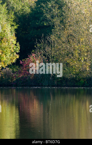 Reflective waters in the Arrow valley lake country park, Redditch, Worcestershire, West Midlands, England, UK - Stock Image