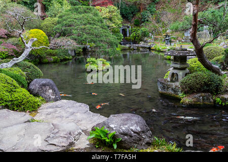 Jizo-ji Temple Garden belongs to the Soto Zen sect of Buddhism. There is garden of kaiyu shiki teien style of the early Edo period.  Here, the backdro - Stock Image