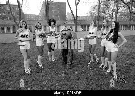 Strange tales of London. Beauty Queens (who will be in the pancake race on Tuesday) and baby elephant Minoti - she is five, but for an elephant that is a baby. February 1975 75-00776-003 - Stock Image