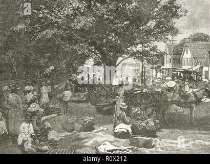 Street scene, Kingston, Jamaica in the 19th century - Stock Image
