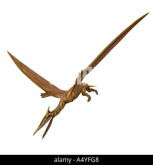 The Quetzalcoatlus northropi was a flight dinosaur with approx. 12 m span and lived in the time of the Cretaceous - Stock Image