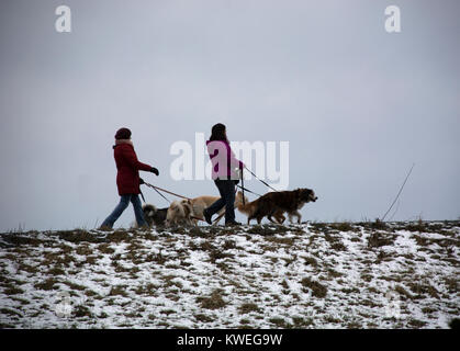 Dog walkers silhouetted on ridge on Fraser River dyke, British Columbia - Stock Image
