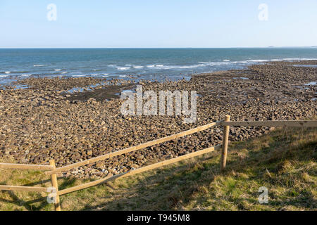 Coastline landscape scenery looking south towards Farne Islands, Holy Island, Lindisfarne, Northumberland, England, UK - Stock Image