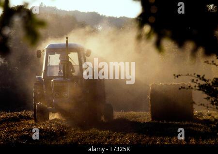 Farming Essex England UK. Harvest time 1980 - Stock Image