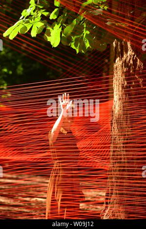 Thursday 27th June 2019. Ffin y Parc Llanrwst North Wales UK MIST, an outdoors art installation by Sébastien Preschoux at Ffin y Parc gallery on the outskirts of Llanrwst in north wales.   Woven  from 14km of orange thread suspended in the trees, the work is the UK public premiere for this French artist and bursts into life in the morning sun. The project was curated by Migrations, an organization dedicated to bringing ground breaking  art to Wales   Photo credit Keith Morris / Alamy Live News - Stock Image