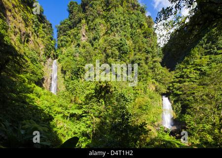 The twin Traflagar Falls in Dominica. - Stock Image
