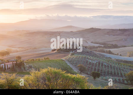 Val d'Orcia, Tuscany, Italy - Stock Image