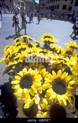 Sunflower heads artificial at Plazza di Spagna with tourists walking around Rome Italy - Stock Image