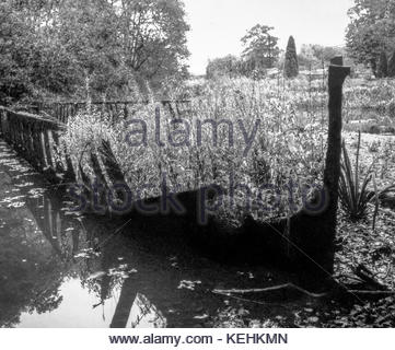 Rusting wreck of a canal narrowboat on the derelict Basingstoke Canal;  Deepcut Locks, Pirbright, Surrey, England, - Stock Image