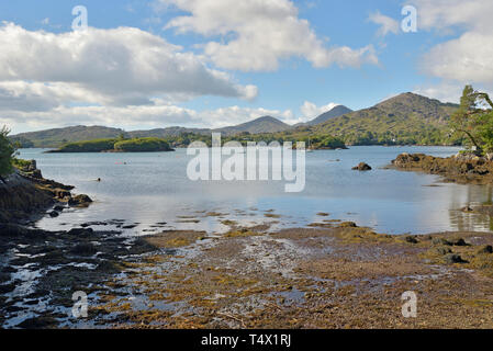 View of Gowlbeg and Sugarloaf with Friar's and Bark Islands and Shrone Hill in the Foreground on the Shore of the Bamboo Park Glengarrif - Stock Image