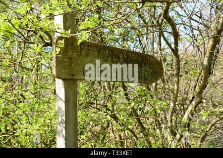 Old weathered wooden sign for Ffynnon Cybi Cybis Well holy well sacred spring Llangybi Ceredigion Wales cymru UK - Stock Image