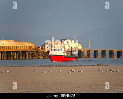 Boat on Water and Seagulls on Land - Stock Image
