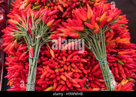 Rialto Mercato, market stall, Chili,  Venedig, Venezia, Venice, Italia, Europe, - Stock Image