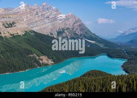Peyto Lake in Banff National Park. - Stock Image