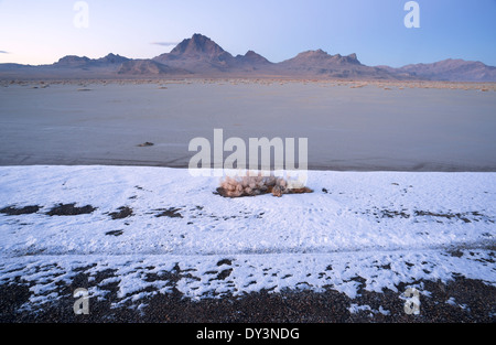 The salt melts the snow first on the flats at sunset - Stock Image