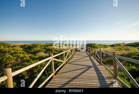 Wooden walkway to mediterranean sea, Artola, Cabopino natural reserve, Andalusia, Spain. - Stock Image