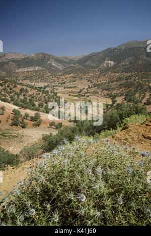 Rural countryside near Ardakan, Fars Province, Iran - Stock Image