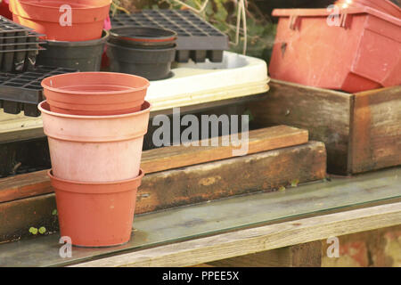 plant pots stacked in a greenhouse on a wooden shelf. - Stock Image