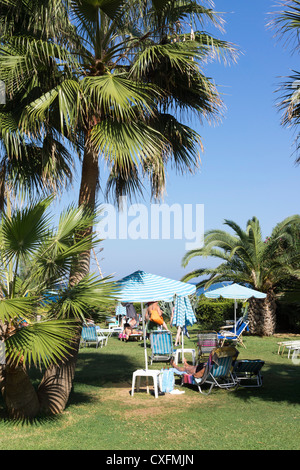 Palm trees and people relaxing in the sun - Stock Image