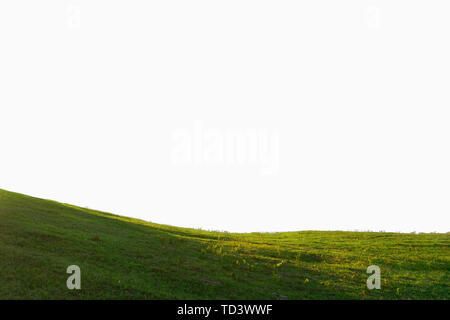 hill of grass isolated on white background - Stock Image