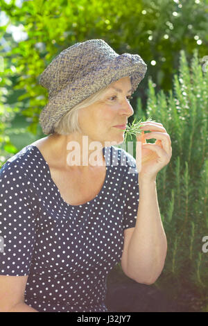 Senior woman in blue polka-dotted dress and straw hat sitting in her garden and enjoying the intense aroma of her - Stock Image