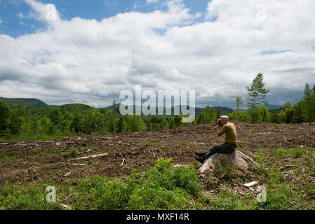 Sad old male photographer sitting on a rock looking an an area of clearcut logging in the Adirondack Mountains, NY USA - Stock Image