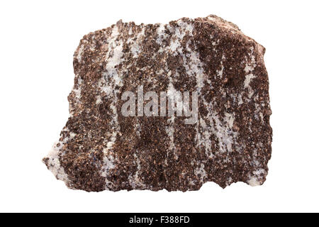 Phlogopite-rock (glimmerite) with carbonatite (carbonate igneous rock) - Stock Image