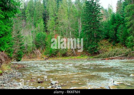 Splattering mountainous river on the background of beautiful mountains. Landscape with a fast mountain river. Mountainous rapid river. Idyllic - Stock Image