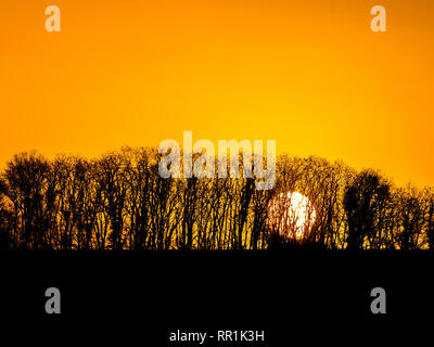 Sunrise and silhouettes, France. - Stock Image
