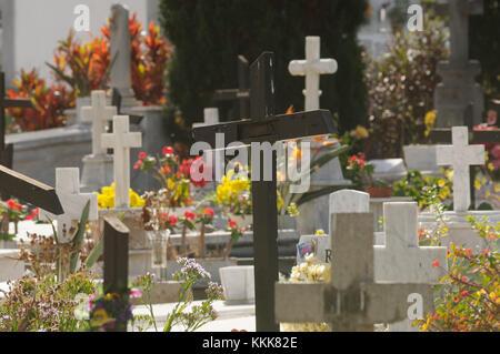 sunlit cemetry grave graves, Puerto de la Cruz, Tenerife, Canary Islands, Spain - Stock Image