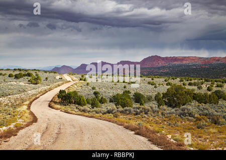 House Rock Valley road in Utah and Arizona desert, USA - Stock Image