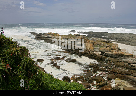 View of the Coast Near Storms River Mouth, Tsitsikamma Nature Reserve, South Africa. Garden Route Otter Trail. - Stock Image