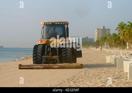 beach maintenance and cleanup florida - Stock Image