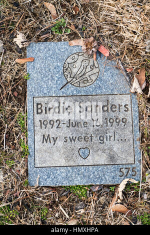 Wantagh, New York, USA. February 5, 2017.  Blue and gray granite tombstone for pet bird BIRDIE SANDERS (1992 - 1999) - Stock Image