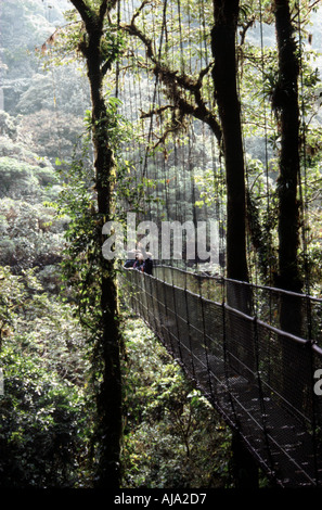 Monte Verde Cloud Forest Reserve Skywalk, Costa Rica - Stock Image