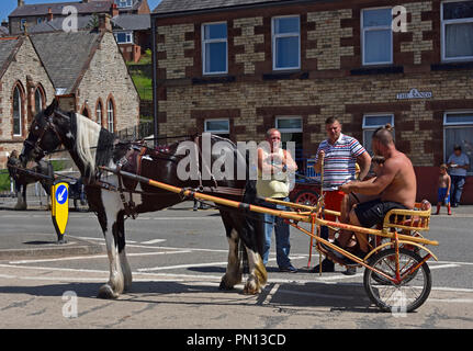 Gypsy Travellers with horse and trotting cart. Appleby Horse Fair 2018. The Sands, Appleby-in-Westmorland, Cumbria, England, United Kingdom, Europe. - Stock Image