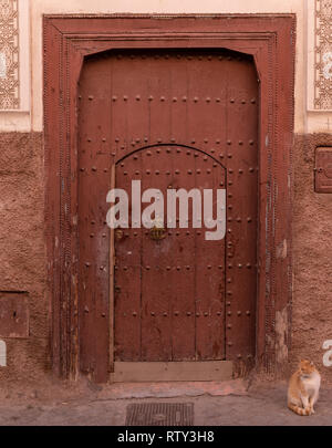 Tabby cat sitting next to a typical doorway in the kasbah, Marrakesh, Morocco - Stock Image