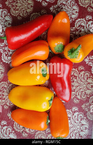 Baby bell peppers. Still life. France - Stock Image