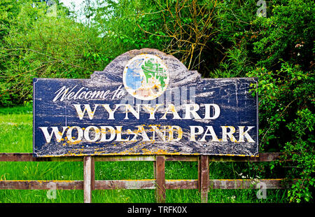 Wynyard Woodland Park, Thorpe Thewles, North East England - Stock Image