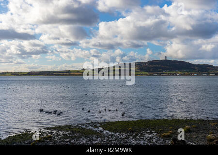Scrabo Tower on Scrabo Hill seen over Strangford Lough, Newtownards, County Down, Northern Ireland. - Stock Image